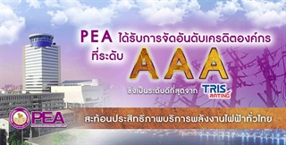 "PEA AFFIRMED ""AAA"" IN COMPANY RATING BY TRIS"